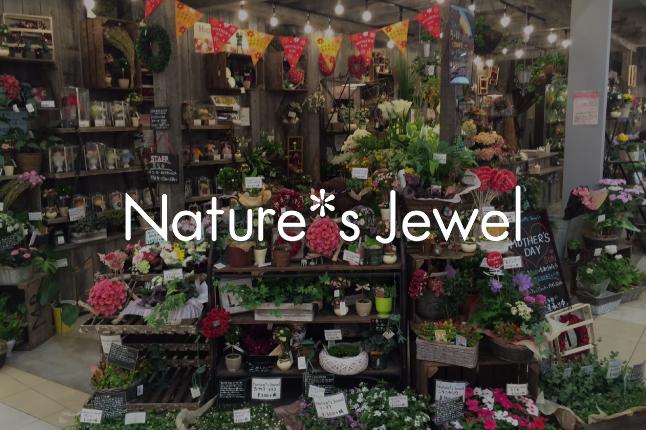 Nature's Jewel 茨城 守谷店