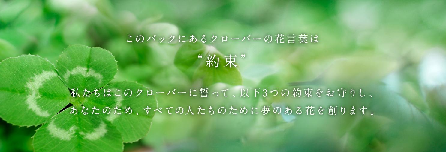 """このバックにあるクローバーの花言葉は""""約束""""。私たちはこのクローバーに誓って、以下3つの約束をお守りし、あなたのため、すべての人たちのために夢のある花を創ります。"""""""