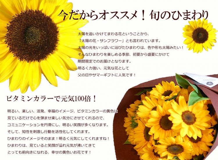 ひまわりの花束(※本数により金額が異なります)