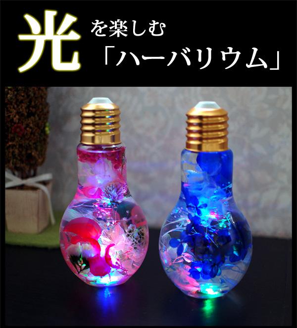 光るハーバリウム 電球型 LED搭載