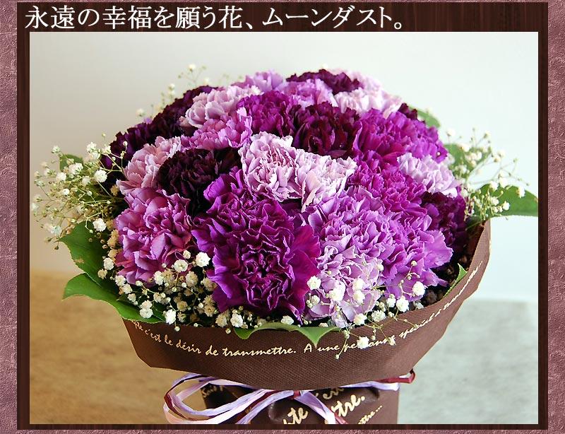 敬老の日プレゼント ムーンダストの花束Sサイズ(12本)花 プレゼント サントリーフラワーズ 紫のカーネーション