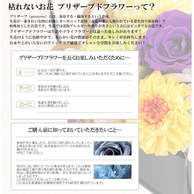 プリザーブドフラワー 紫苑(しおん) 和風プリザ 母の日プレゼント