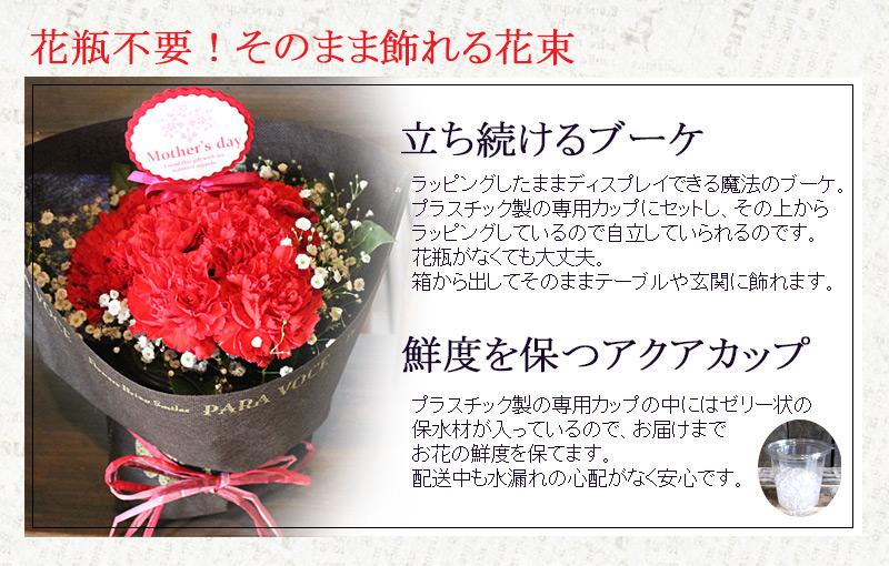 赤いカーネーションのスタンディングブーケ Sサイズ (12本) 母の日