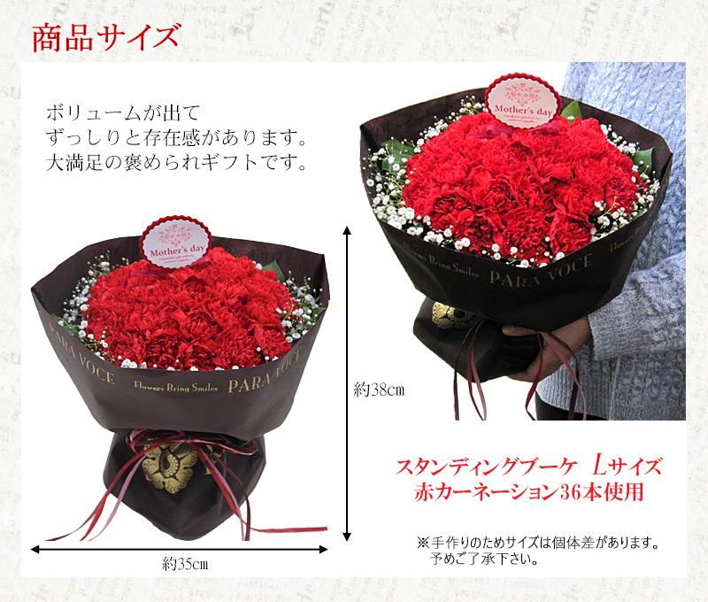 赤いカーネーションのスタンディングブーケ Lサイズ (36本) 母の日